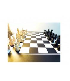 Peças para Xadrez